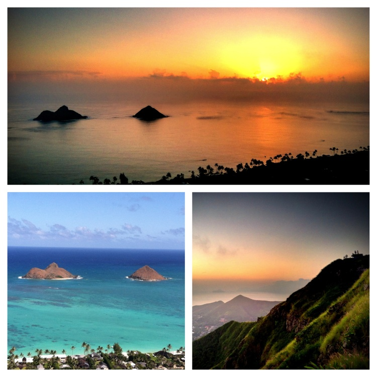 Hike the pillboxes at sunrise or midday.